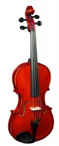 3 16w 121x300 Strunal Viola 3/160