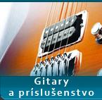 gitary Shop